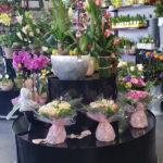 présentoir fleuriste
